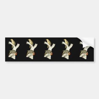 Yellow-crowned or Mahratta Woodpecker Bumper Sticker