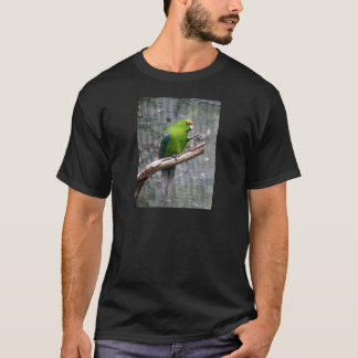 Yellow-crowned Parakeet T-Shirt