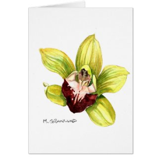 Yellow Cymbidium Orchid Card