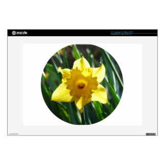 """Yellow Daffodil 02.2_rd 15"""" Laptop Decal"""