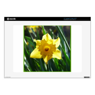 Yellow Daffodil 03.0.g Laptop Skins