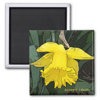 'Yellow Daffodil' 2 Inch Square Magnet