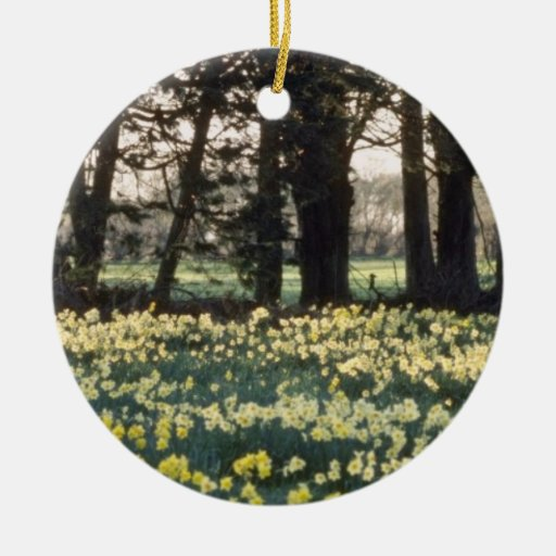 yellow Daffodil field flowers Ornament