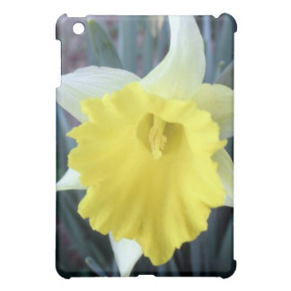 Yellow Daffodil Flower Floral Macro iPad Mini Case