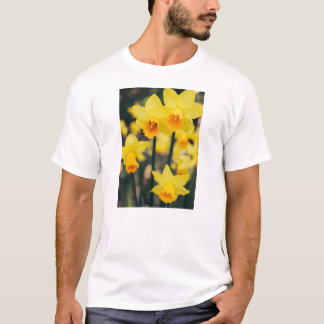 Yellow Daffodil Flowers Blooming In Spring T-Shirt