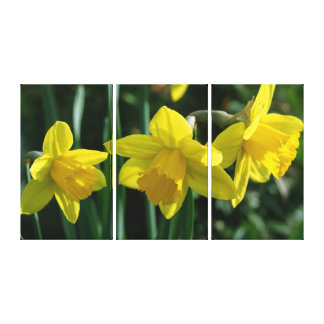 yellow daffodil flowers canvas gallery wrap canvas
