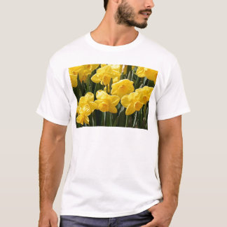 Yellow Daffodil flowers in bloom T-Shirt