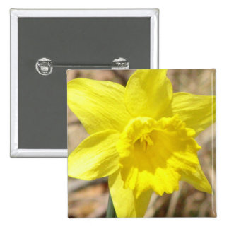 Yellow Daffodil Flowers Square Pin