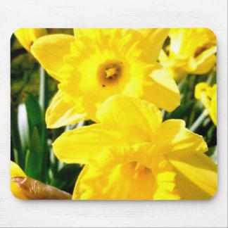 Yellow Daffodil Mouse Pad