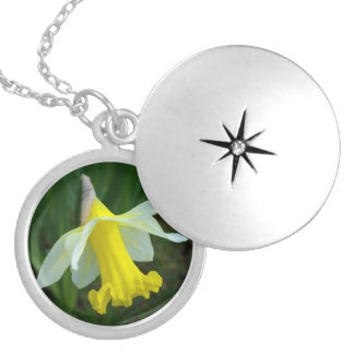 Yellow Daffodil Round Locket Necklace