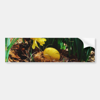 Yellow Daffodils and a Yellow Easter egg Bumper Sticker
