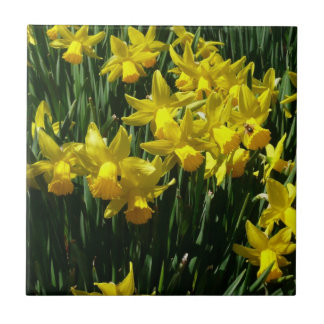 Yellow Daffodils I Cheery Spring Flowers Ceramic Tile