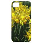 Yellow Daffodils I Cheery Spring Flowers iPhone SE/5/5s Case