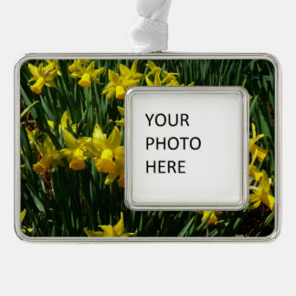 Yellow Daffodils I Cheery Spring Flowers Silver Plated Framed Ornament