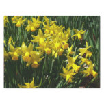 Yellow Daffodils I Cheery Spring Flowers Tissue Paper