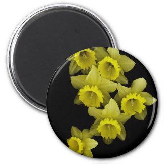 Yellow Daffodils On Black Refrigerator Magnet