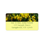 Yellow Daffodils Return Address Label