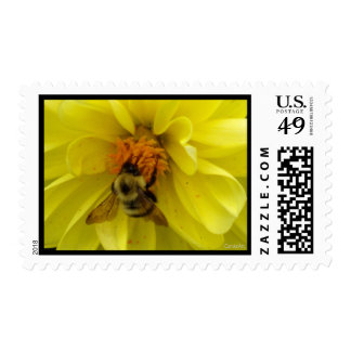 Yellow Dahlia Bee Postage Stamps