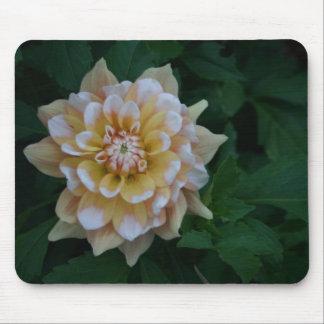 Yellow dahlia flower blossom mousepad gift idea