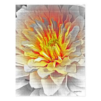 Yellow Dahlia Flower Pencil Sketch Postcard