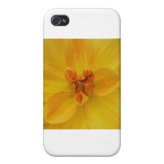 Yellow Dahlia iPhone 4 Covers