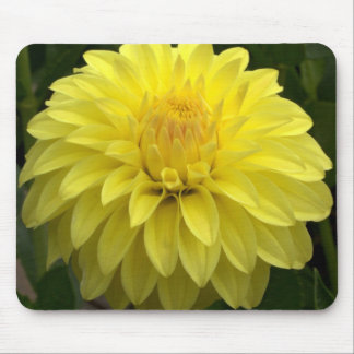Yellow Dahlia On multiple Products Mouse Pad
