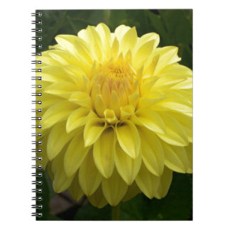 Yellow Dahlia On multiple Products Note Book