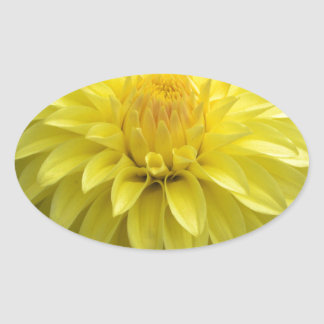 Yellow Dahlia On multiple Products Oval Sticker