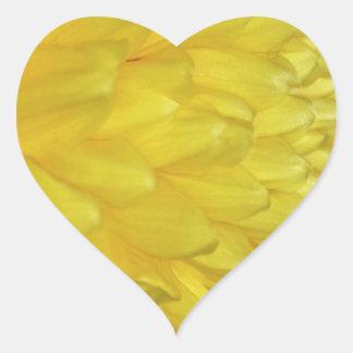 Yellow Dahlia petals Heart Sticker