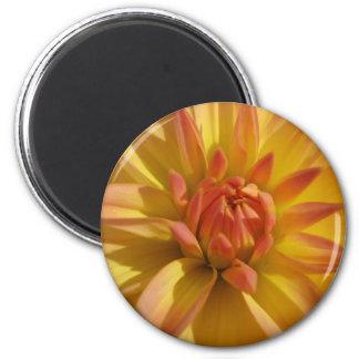 Yellow Dahlia Refrigerator Magnets