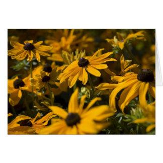 Yellow Daises Card