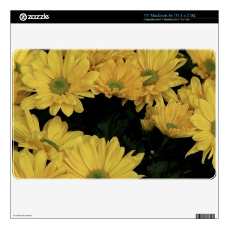 Yellow Daisies Garden Flowers Designer Skin Skins For MacBook Air