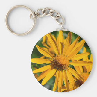 Yellow Daisies in the Mountains Santa Fe keychain