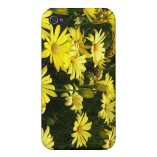 Yellow Daisies iPhone3 Speck Case Cases For iPhone 4