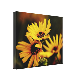 Yellow Daisies on Canvas