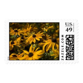 Yellow Daisies Postage
