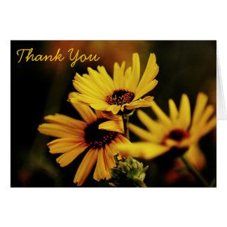 Yellow Daisies Thank You Greeting Card