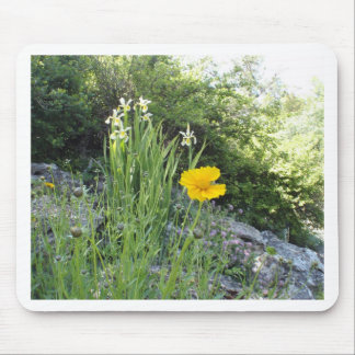 Yellow Daisy And White Irises Mouse Pad