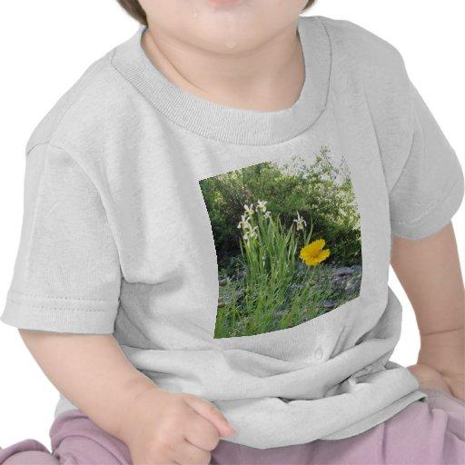 Yellow Daisy And White Irises Tshirt