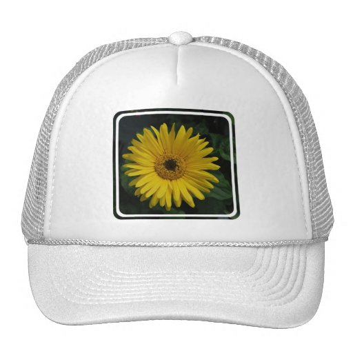 Yellow Daisy Baseball Hat