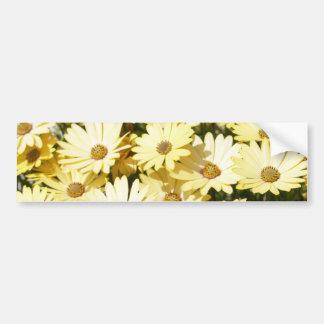 Yellow Daisy Bumper Sticker Car Bumper Sticker
