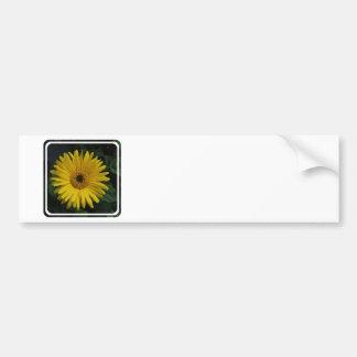 Yellow Daisy Bumper Stickers