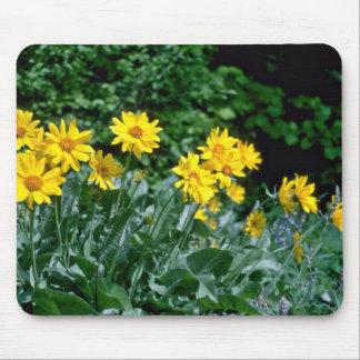 Yellow Daisy Clump flowers Mousepad