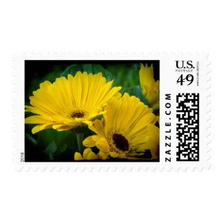 Yellow Daisy Dark Edge Postage
