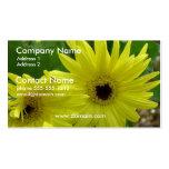 Yellow Daisy Festival Business Card