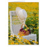 Yellow Daisy Field Cards