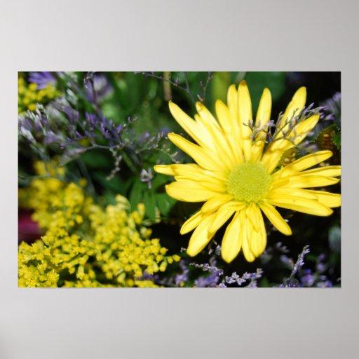 Yellow Daisy Floral Arrangement Print