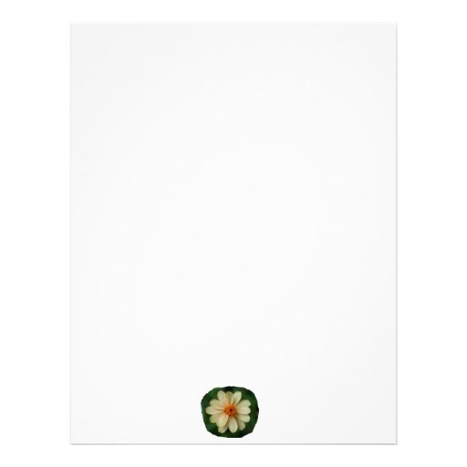 Yellow Daisy Flower green background close up Letterhead