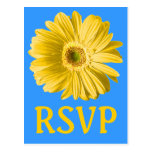 Yellow Daisy Flower RSVP Or Custom Post Card