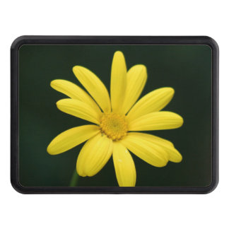 Yellow Daisy flower Trailer Hitch Cover